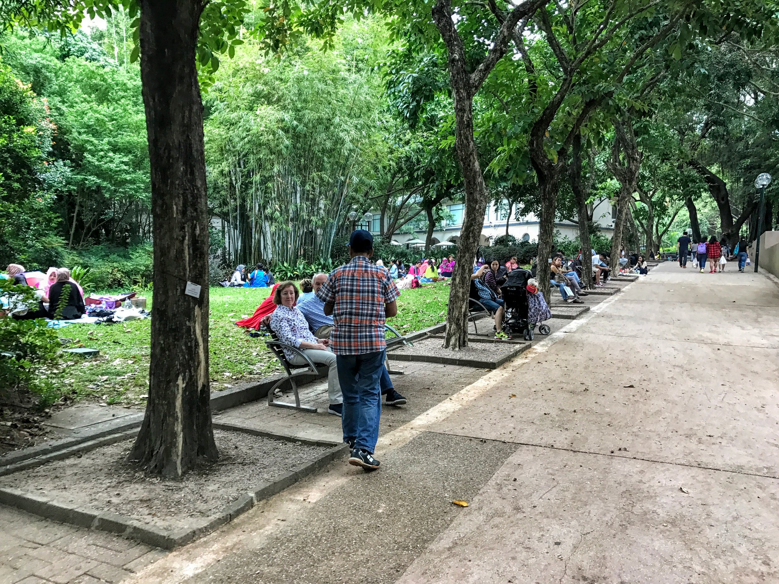 Everyone getting together on Sunday to hangout and catch up at Kowloon Park // Hong Kong
