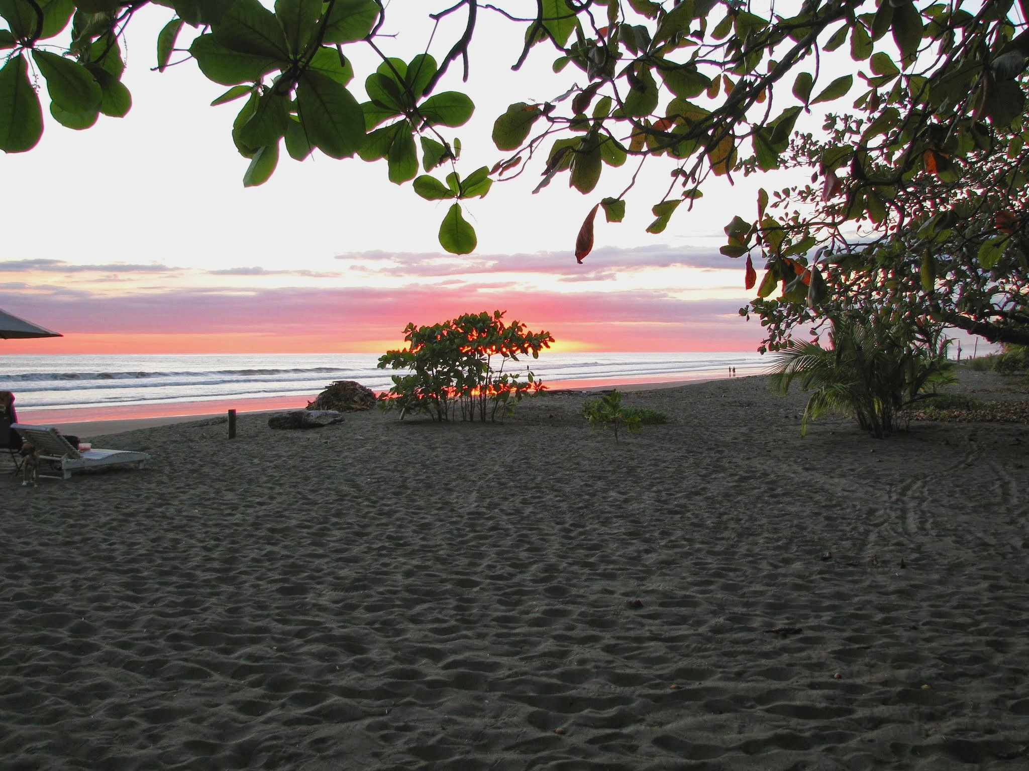 Sunset in Matapalo