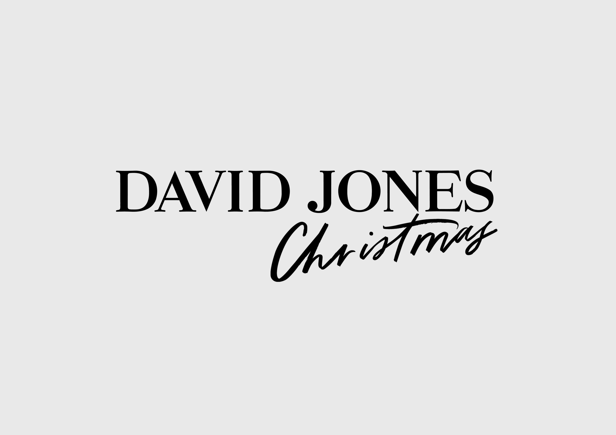 David Jones Christmas Campaign Lettering  2015/2016