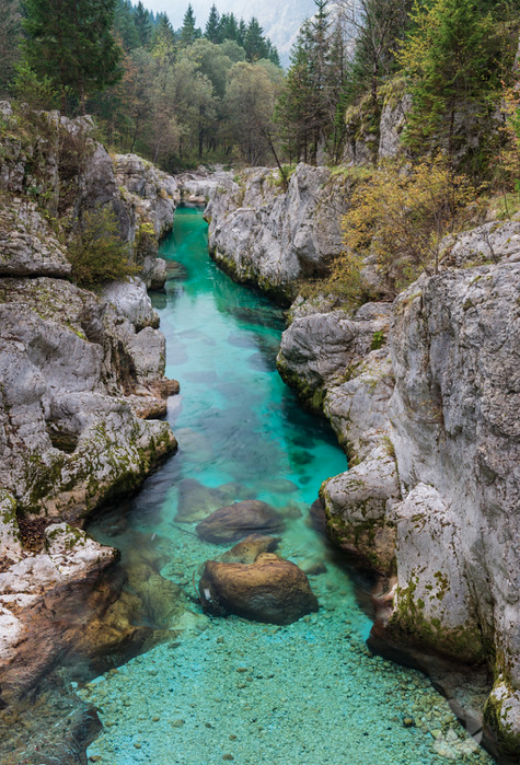 The emerald river and its tributaries AMAZE VISITORS WITH THEIR BEAUTY