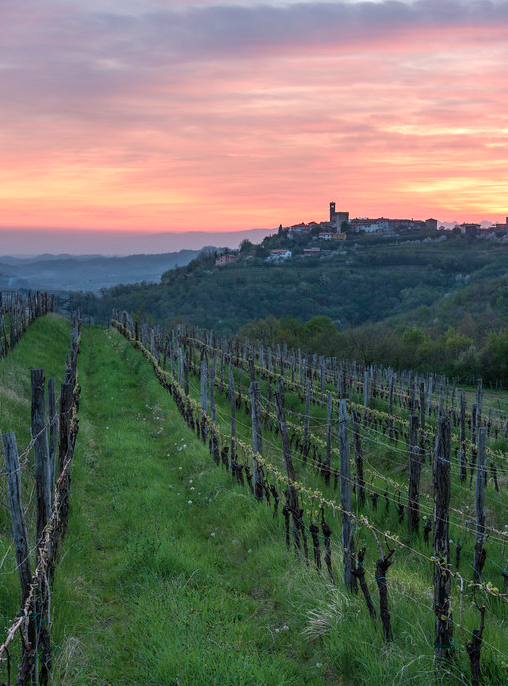 Some of Slovenia's best wine is found in this small region of rolling hills