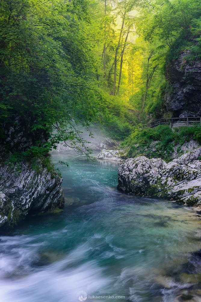 vintgar gorge is a place of serenity and BEAUTY