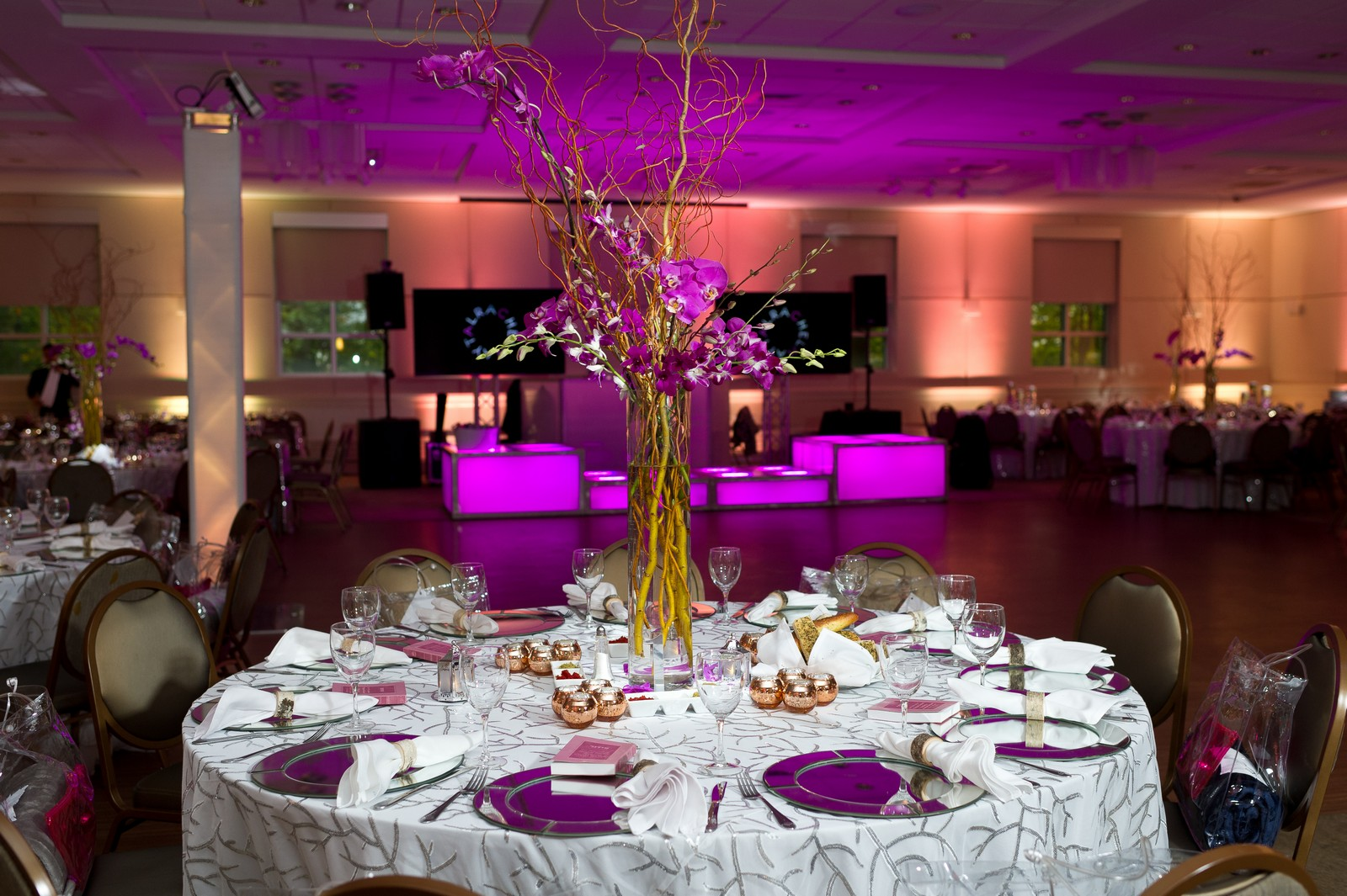 Maytal's Bat Mitzvah in New Rochelle, NY, Photos by Chaim Schvarcz Elegant Classy New Rochelle