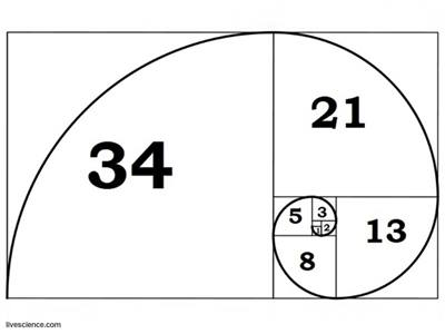 "The Fibonacci Sequence which creates the ""Golden Ratio"" of Phi or 1.618 that is repeated in nature in the form of the sacred spiral."