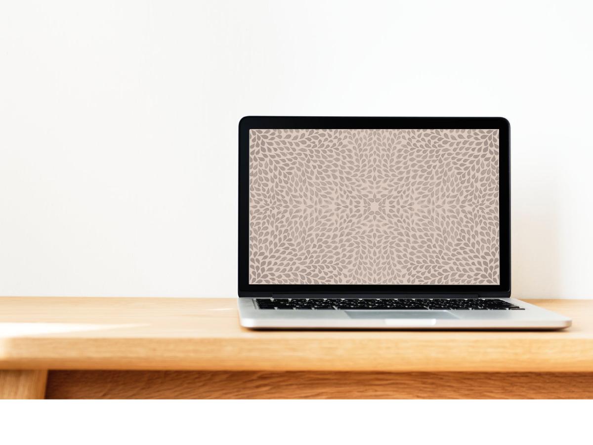 Desktop /  ipad /  iphone X