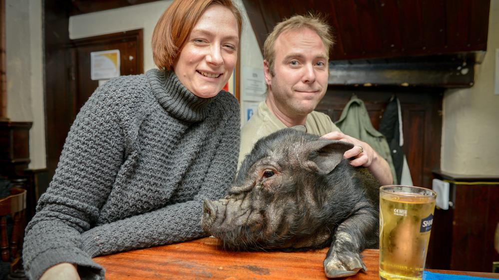 Francis Bacon and herpub mates