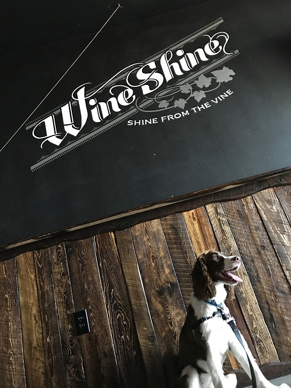 Wine Shine Darby.jpg