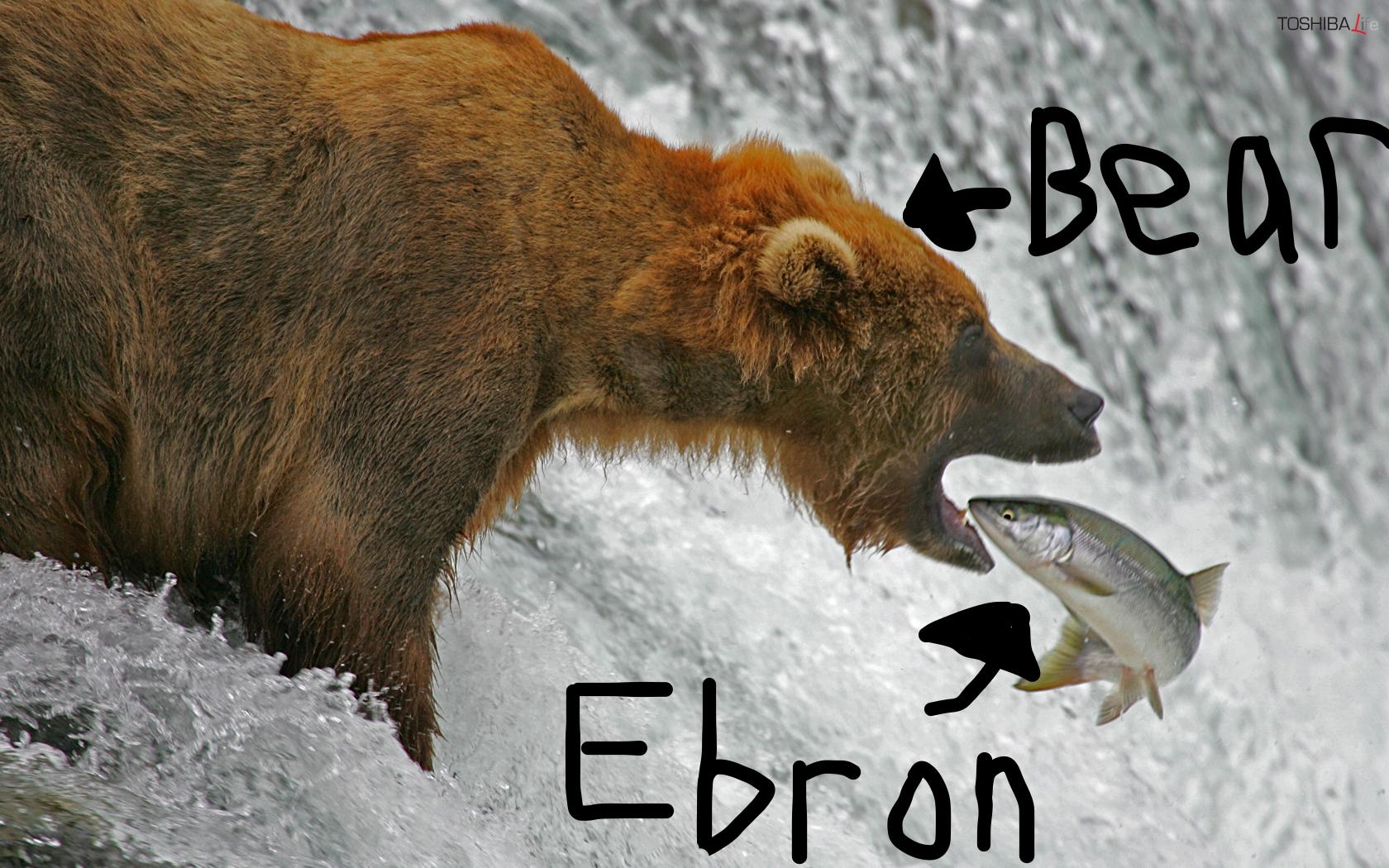Bear eats Eric Ebron