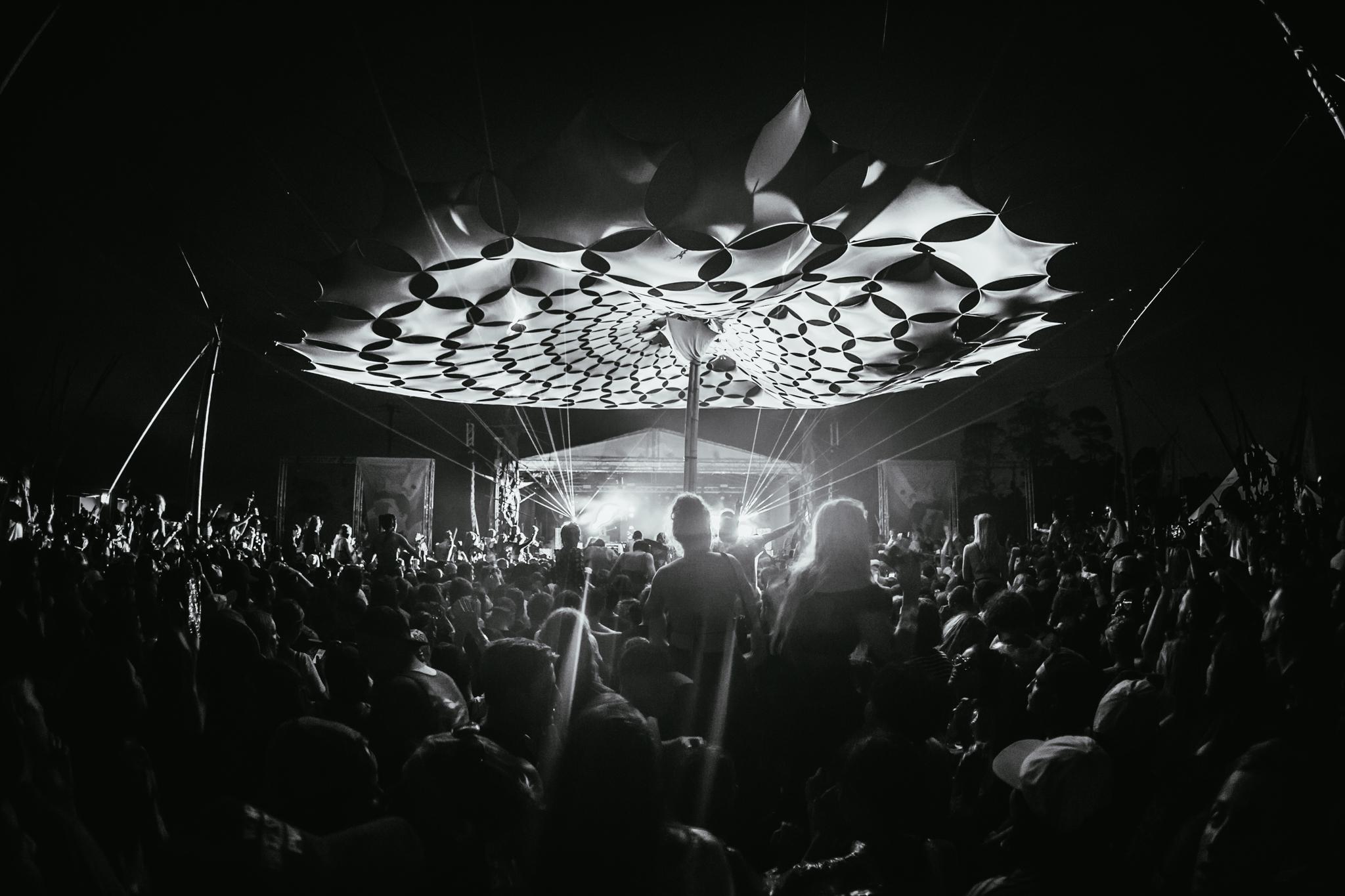 Mitch Lowe Photo -  Mountain Sounds Festival-107.jpg