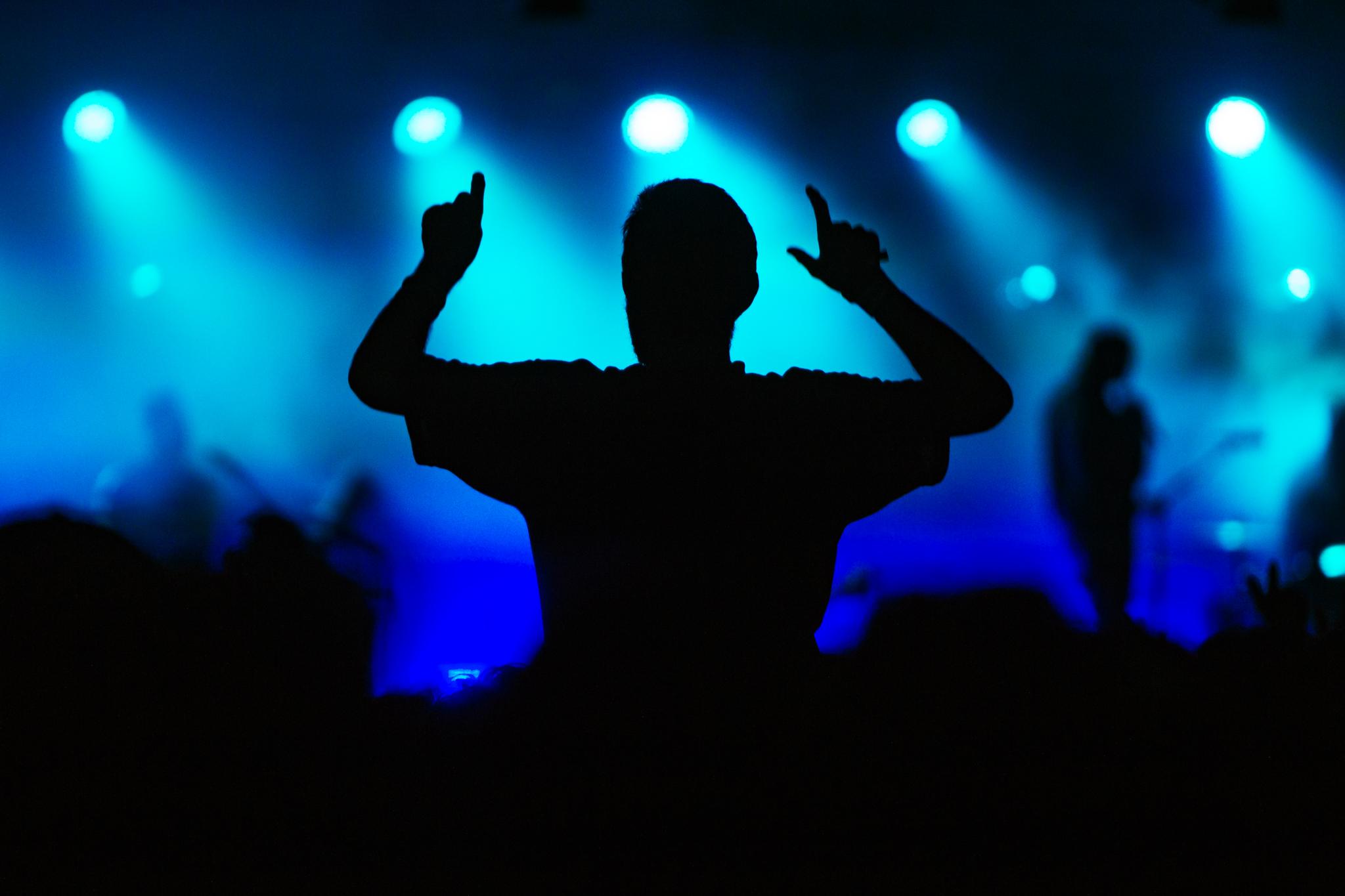 Mitch Lowe Photo -  Mountain Sounds Festival-123.jpg