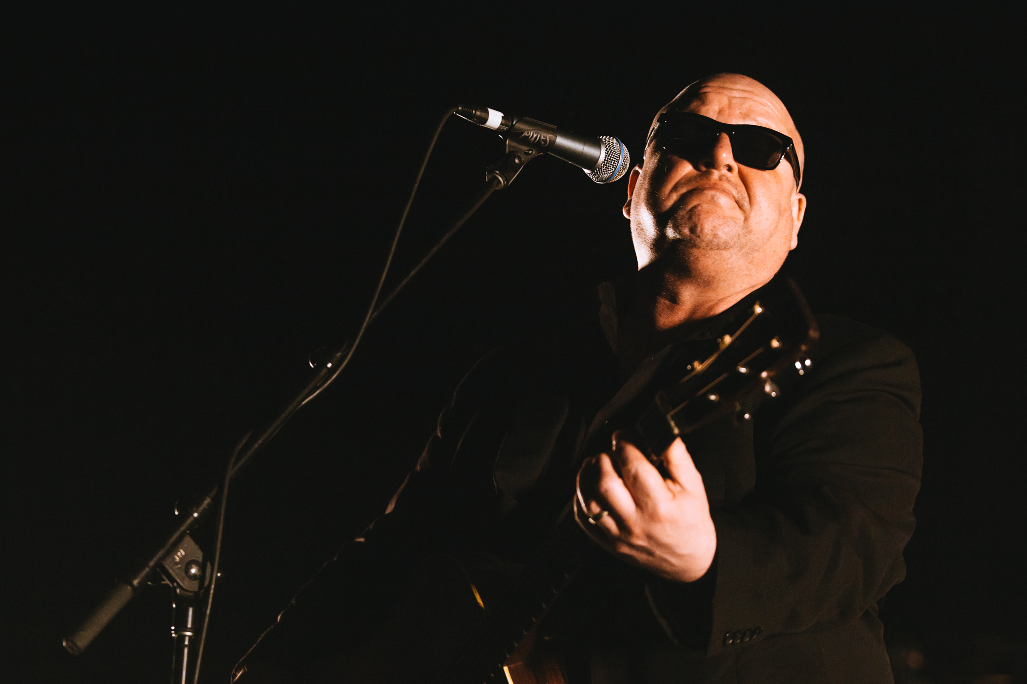 Mitch Lowe Photo - Pixies - Riverstage-16.jpg