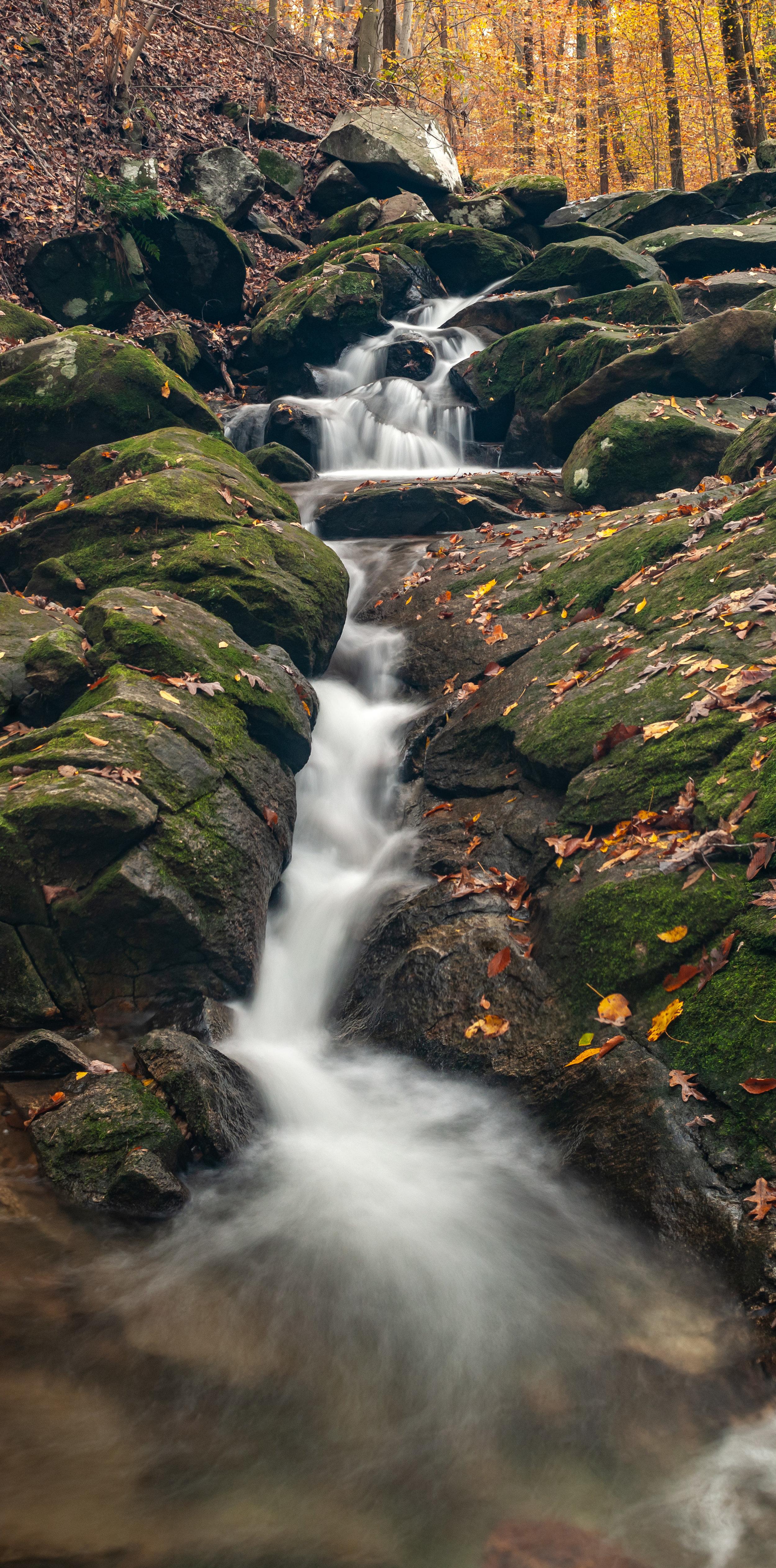 Loch Raven Autumn