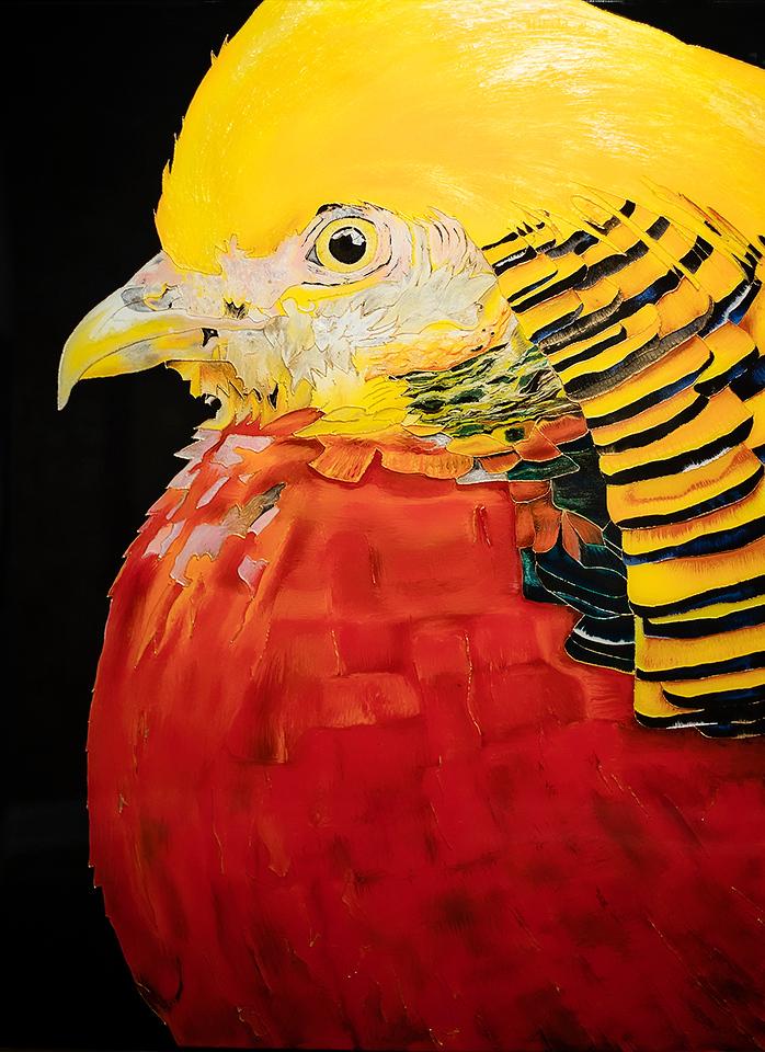 "Golden Pheasant No. 5   36"" x 48""  $14,424"