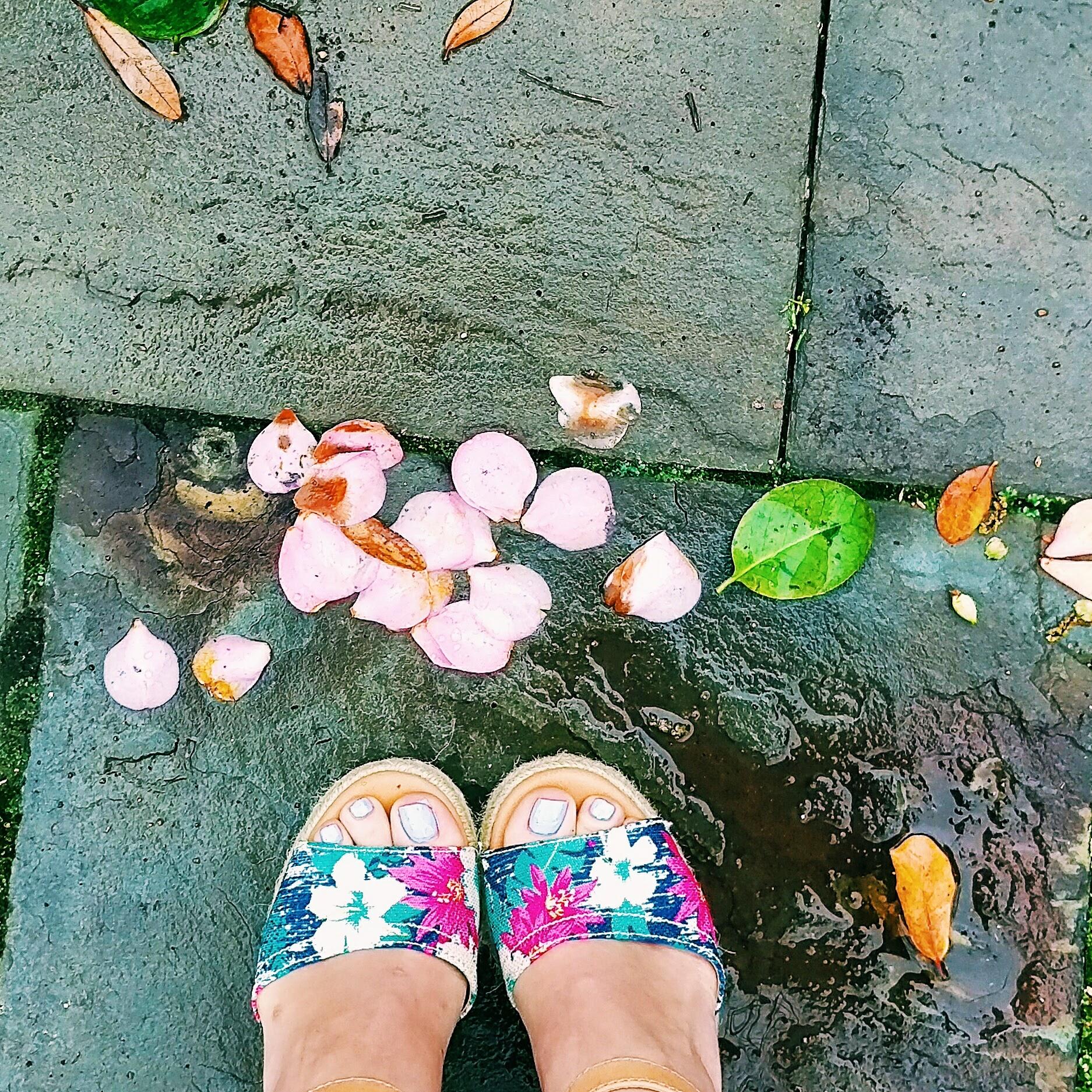 Three Heel Clicks - Houston Hotspots - Tiny Boxwood's (11).jpg
