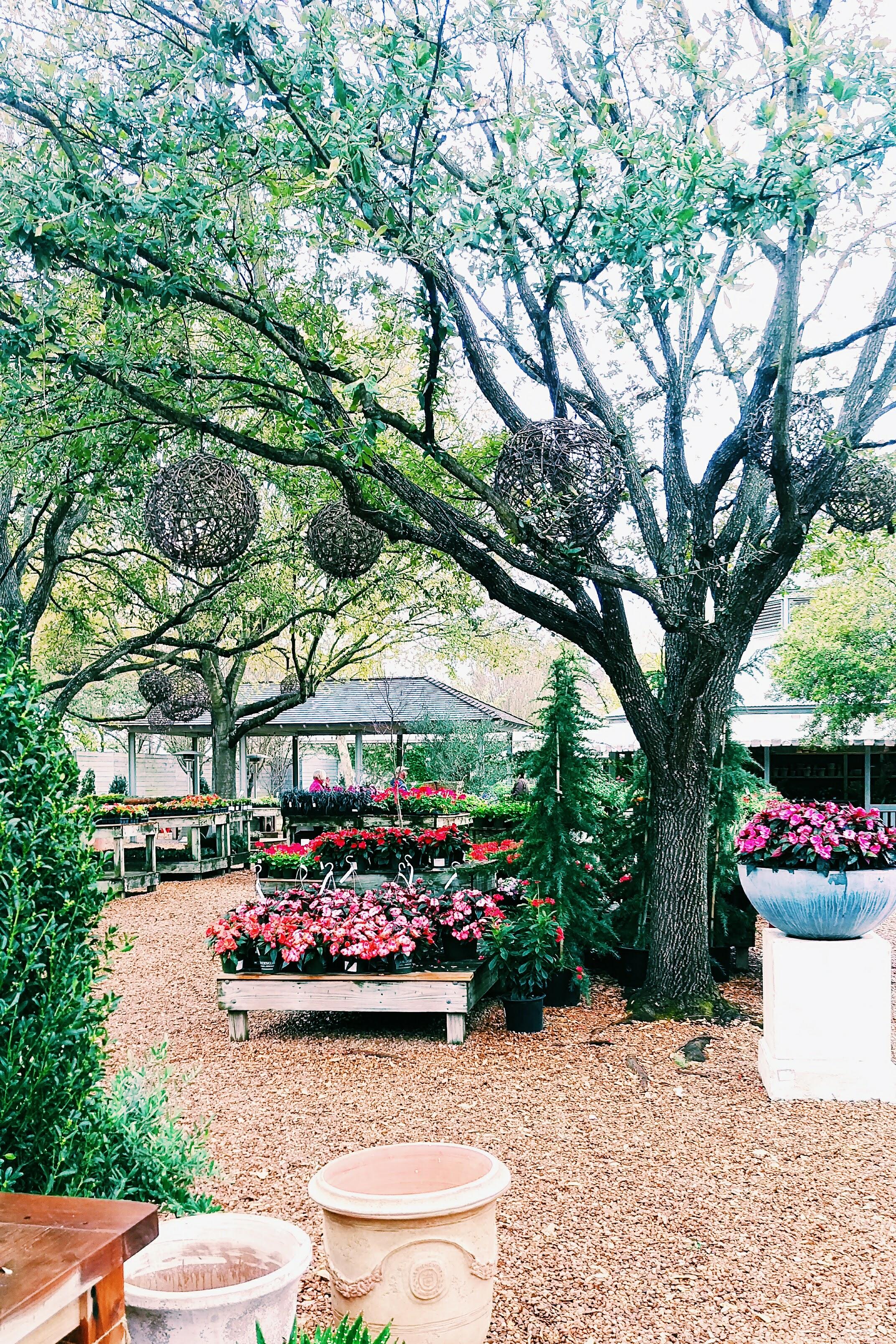 Three Heel Clicks - Houston Hotspots - Tiny Boxwood's (10).jpg