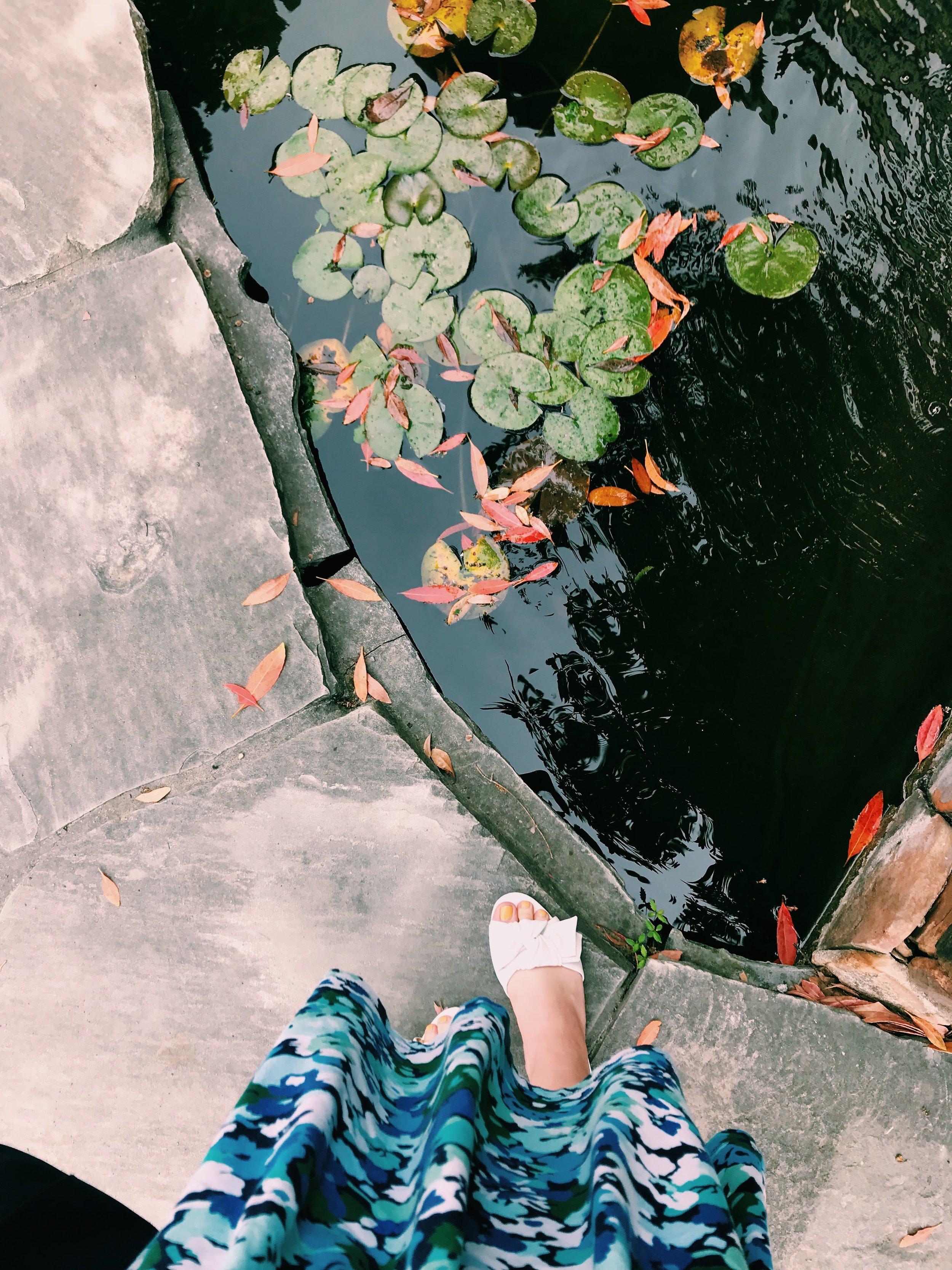 Three Heel Clicks - Houston Hotspots - Nelson Water Gardens (25).jpg