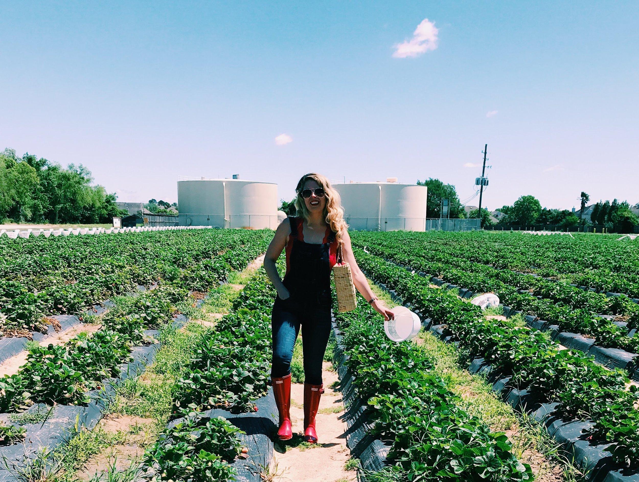 Three Heel Clicks - Strawberry Picking at Atkinson's Farms (23).jpg