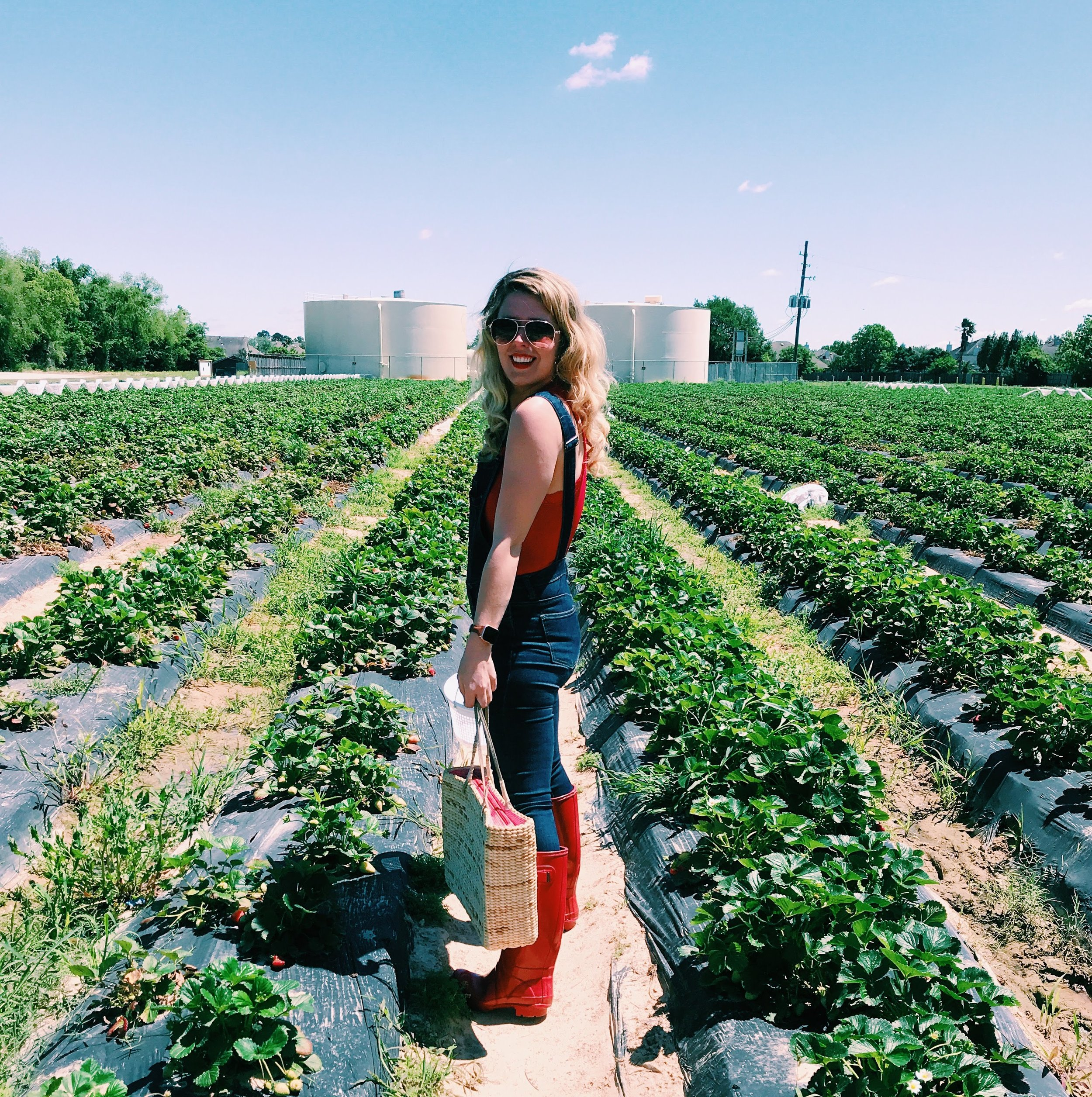 Three Heel Clicks - Strawberry Picking at Atkinson's Farms (19).jpg