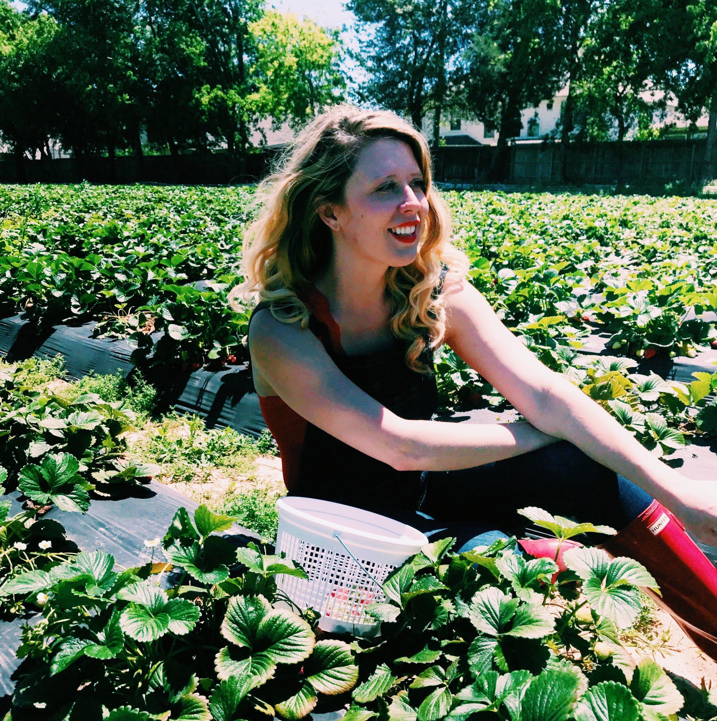 Three Heel Clicks - Strawberry Picking at Atkinson's Farms (1).jpg