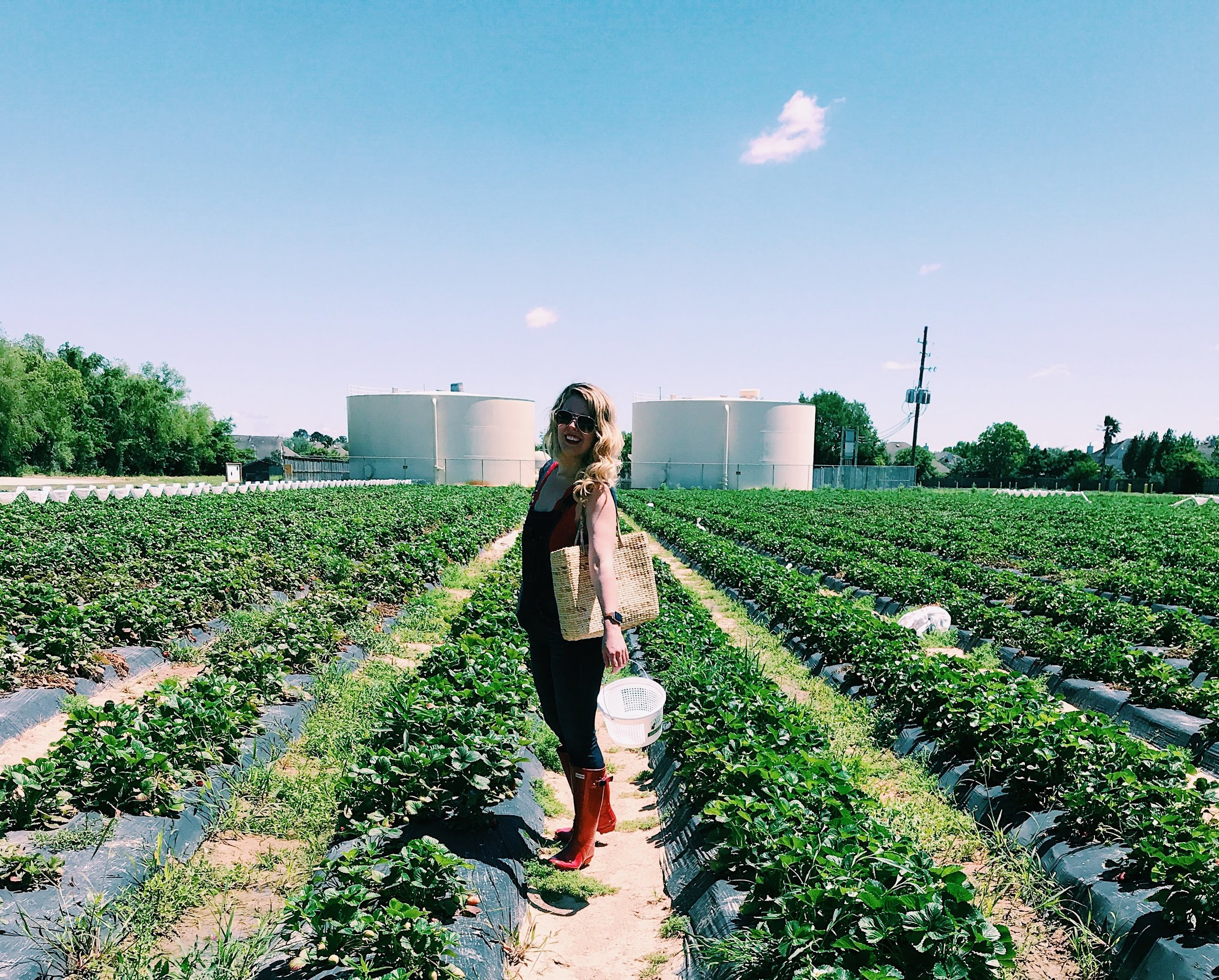 Three Heel Clicks - Strawberry Picking at Atkinson's Farms (13).jpg