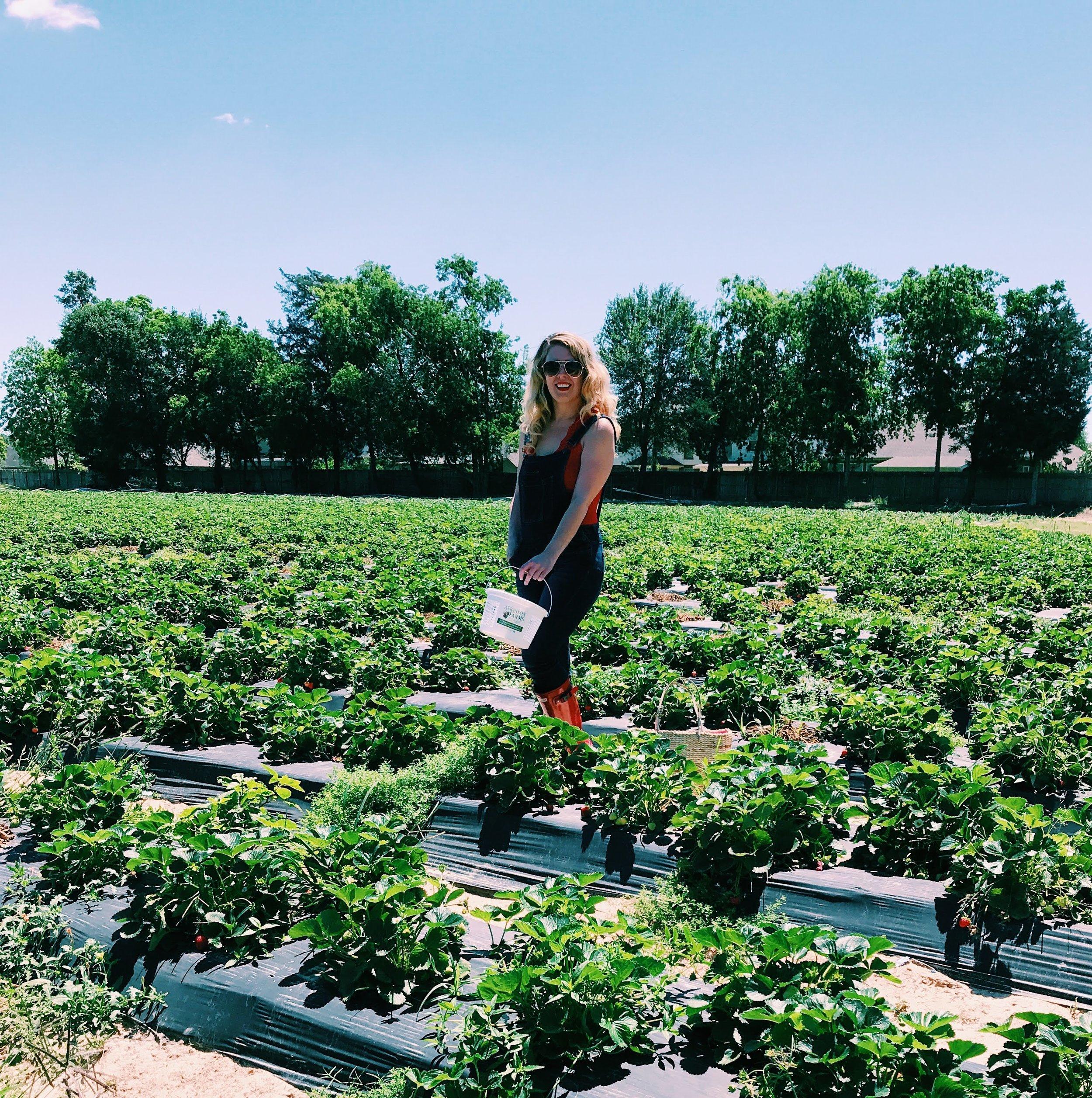 Three Heel Clicks - Strawberry Picking at Atkinson's Farms (9).jpg