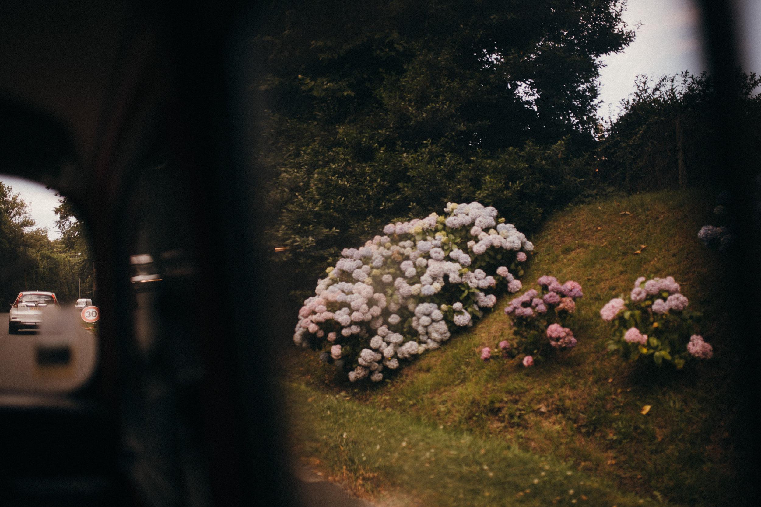nicolemariephoto-1921.JPG