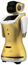Gold Sanbot.jpg