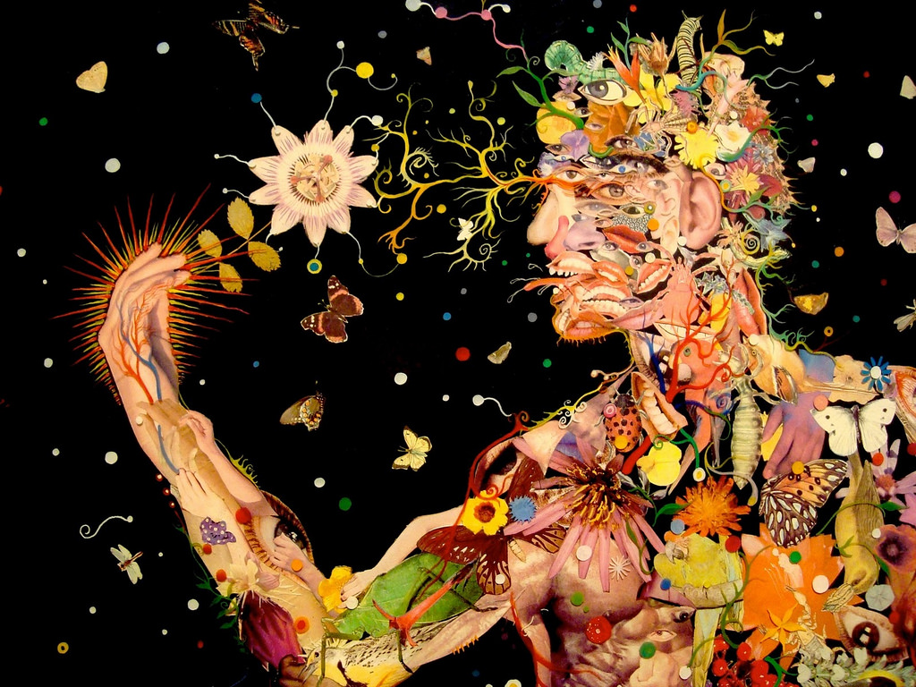Artist: Fred Tomaselli