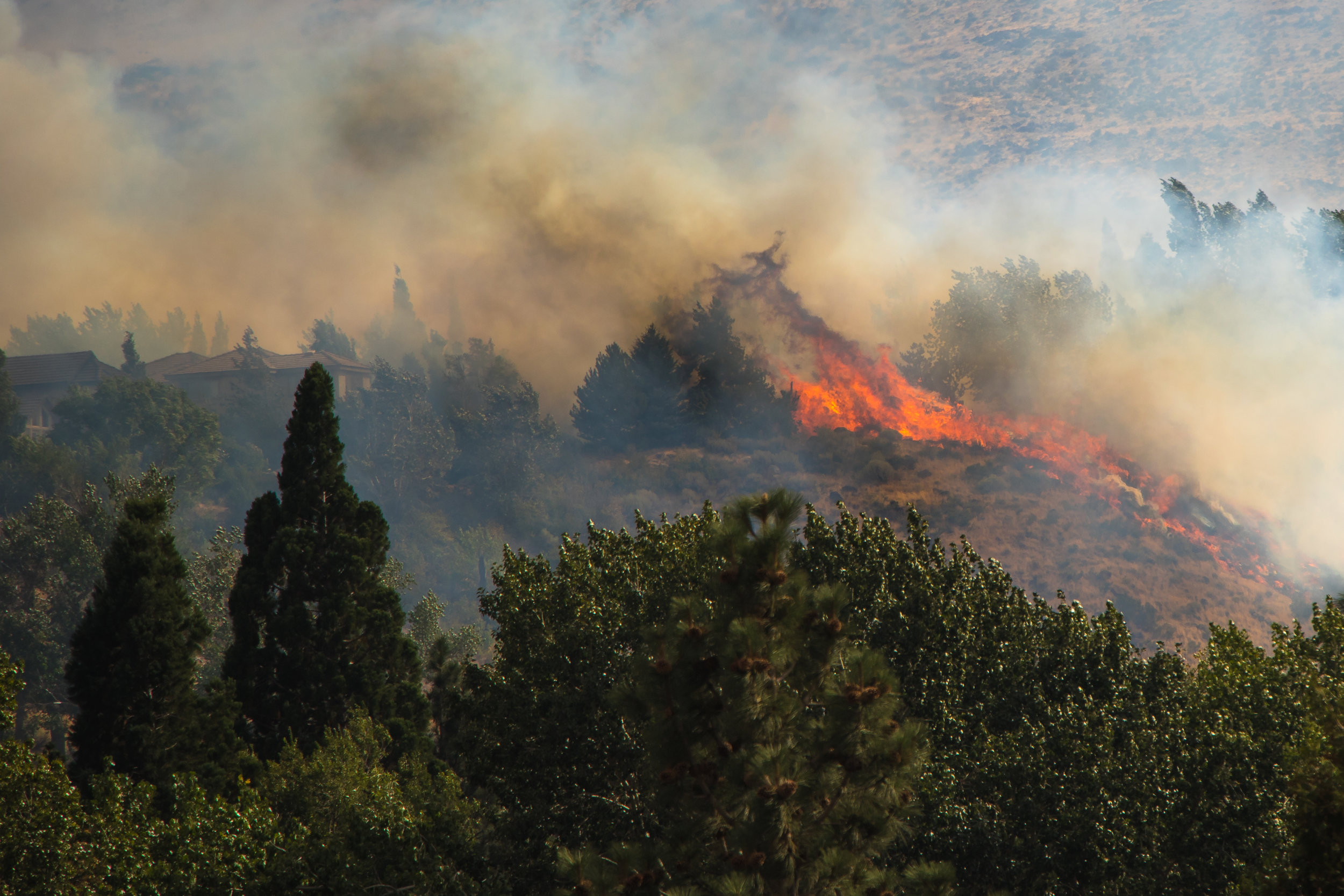 The Woodchuck Fire was a quick fire in the Juniper Ridge neighborhood in west Reno. It quickly threatened homes, but ultimately only a few fences were damaged.