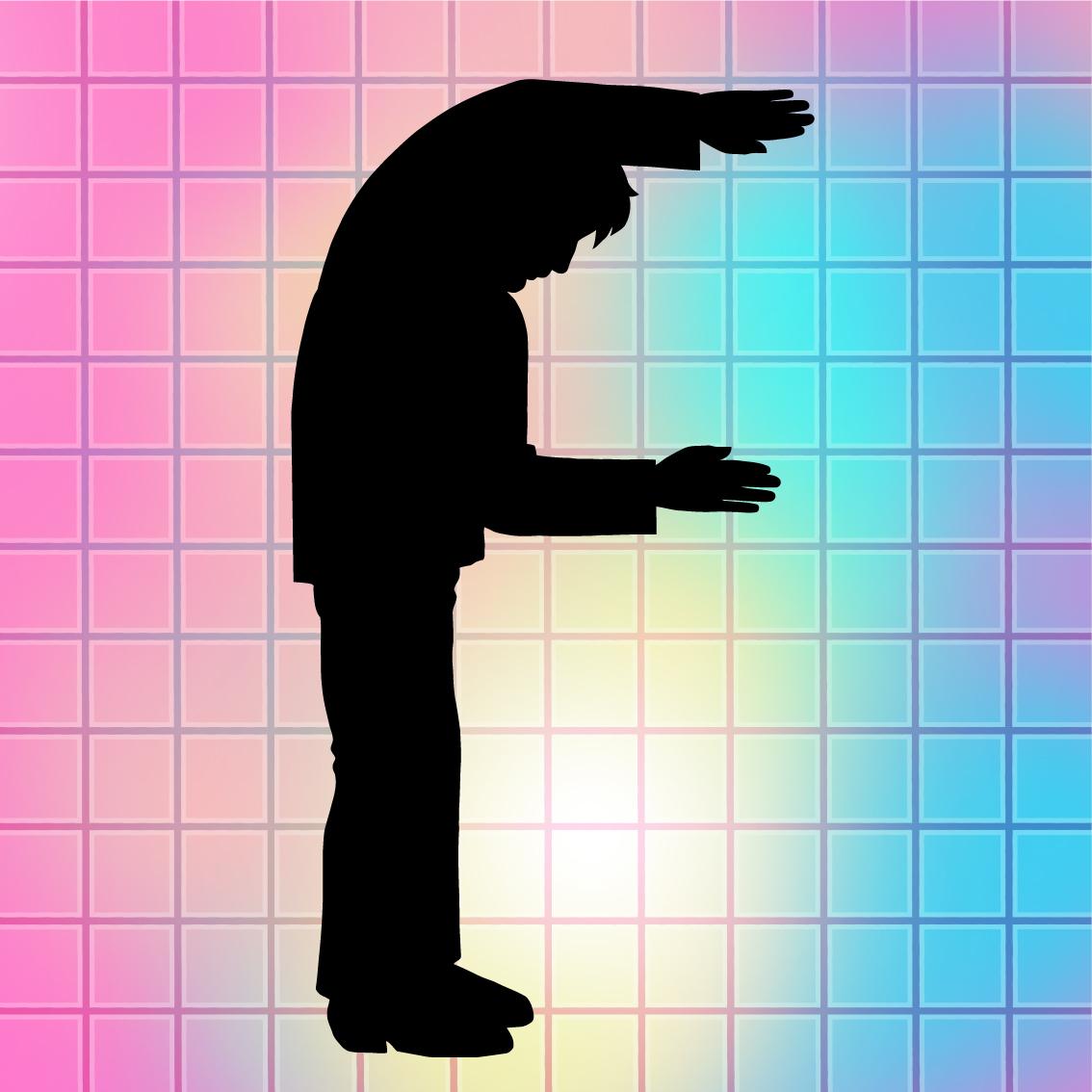 Copy of Palmy_Fring_logo.jpg