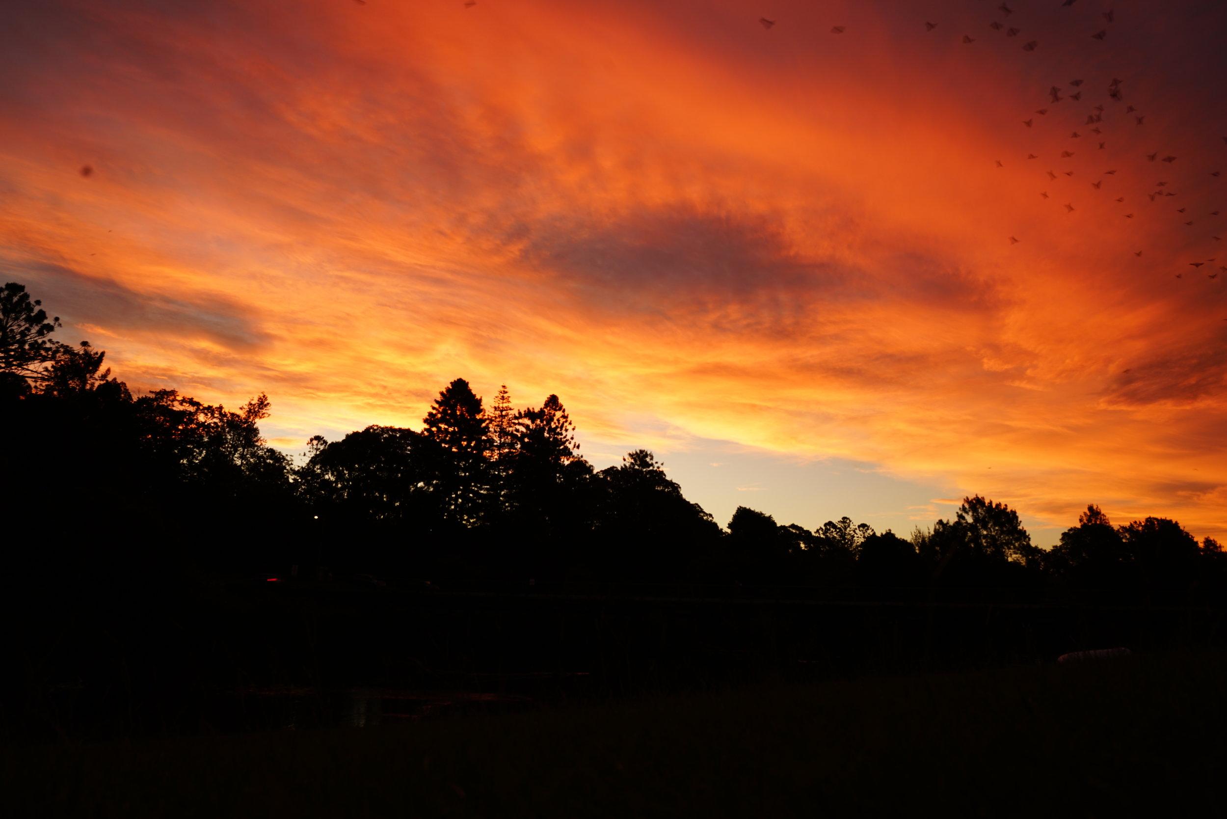 Bellingen Sunset