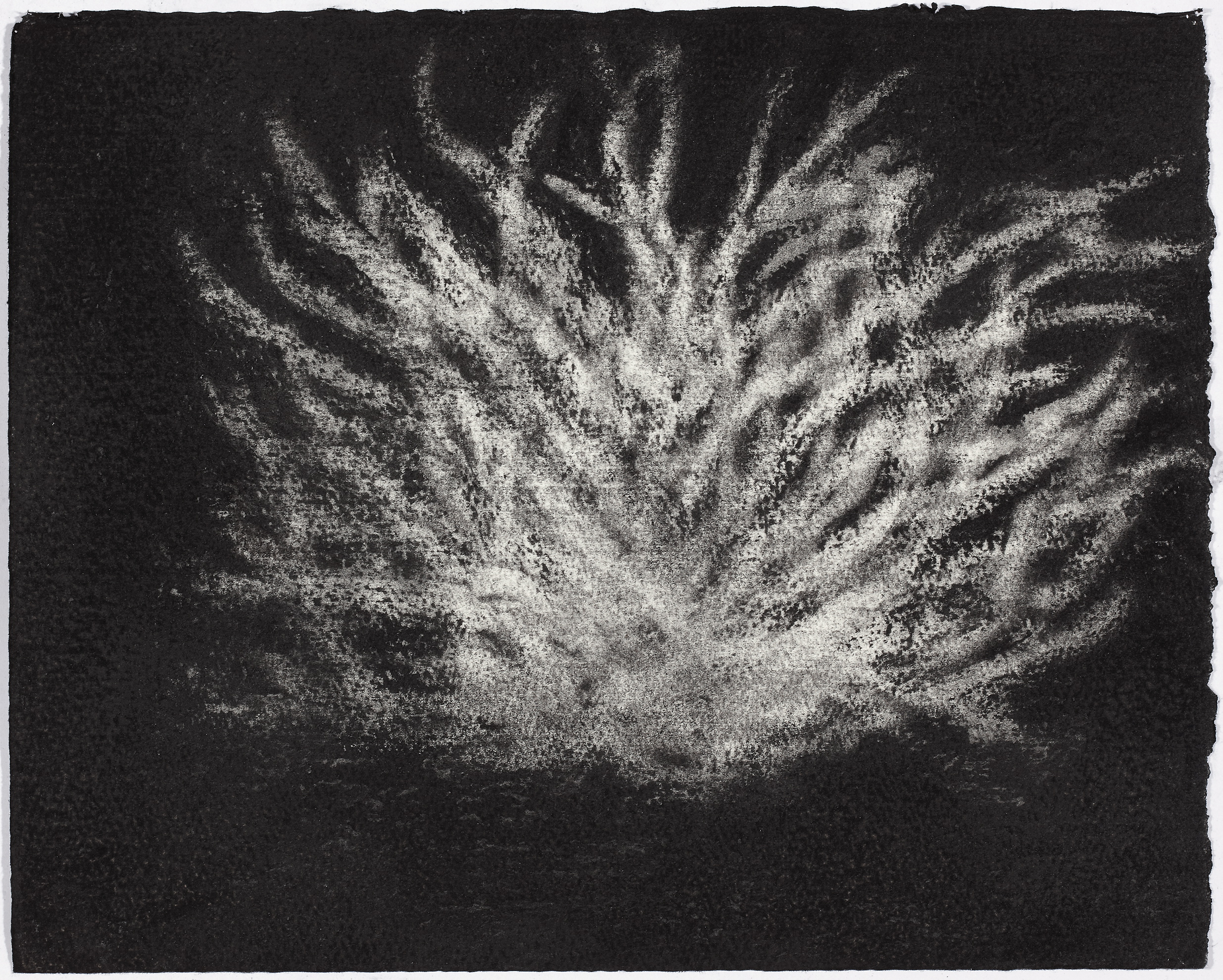 charcoal on paper, 26.5 x 33cm, collection The Art Gallery of New South Wales