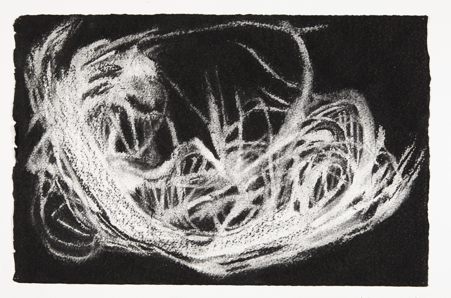 Nest, 2013-2014, charcoal on paper, 22x33cm