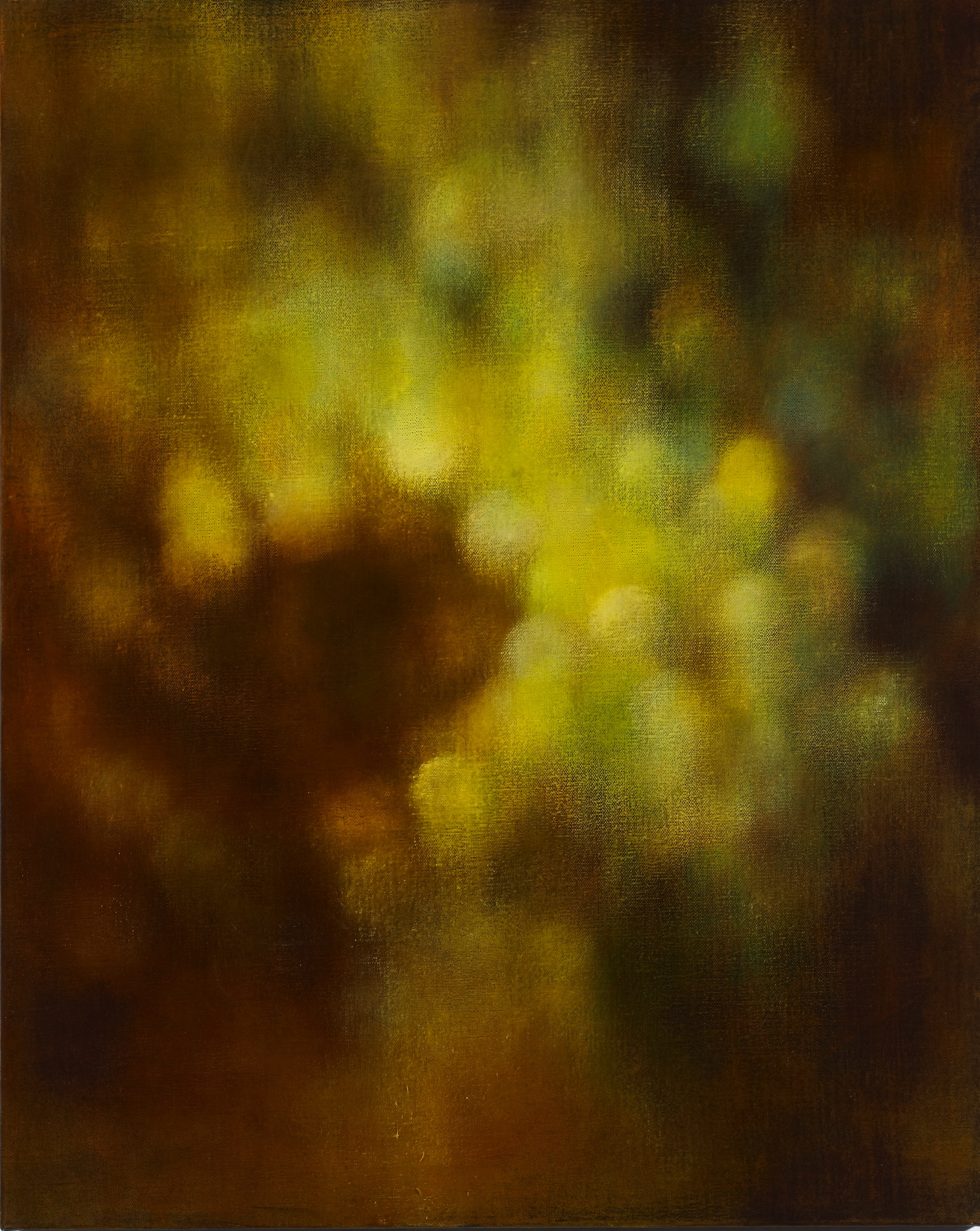 Halo of light, 2012, oil on canvas, 76x61cm