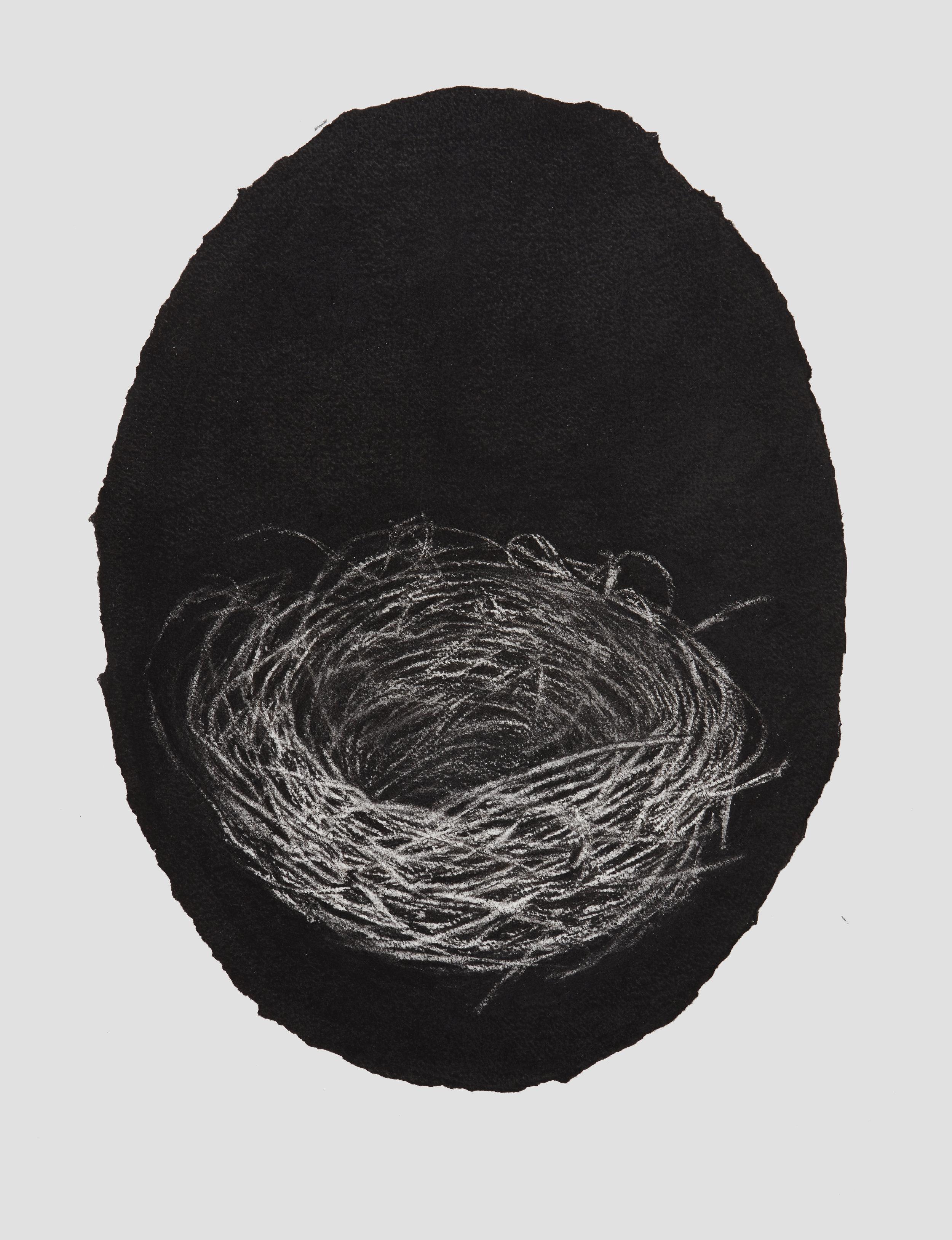 portrait nest, 2017, 44x33cm, charcoal on paper