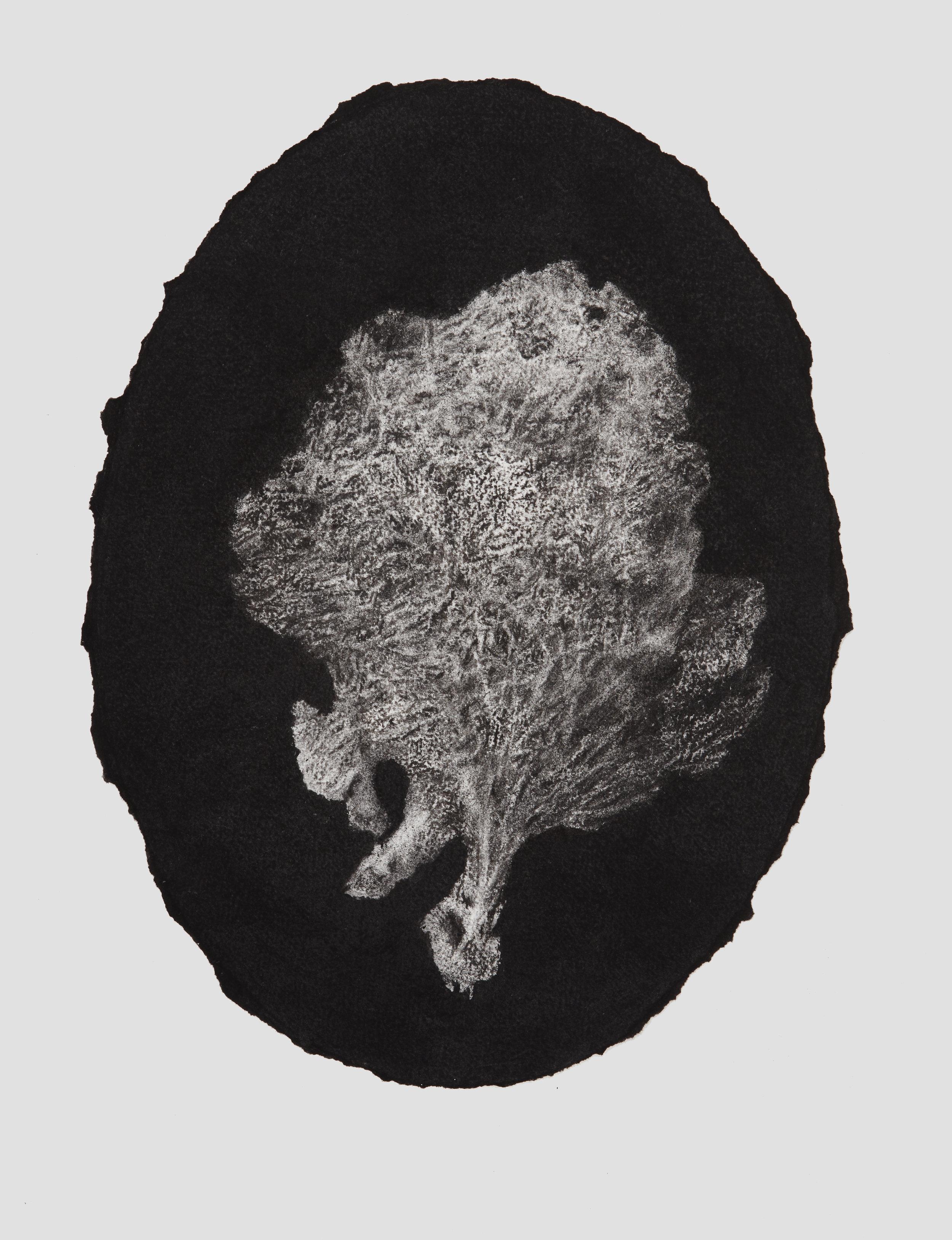 portrait sponge, 2017, 44x33cm, charcoal on paper