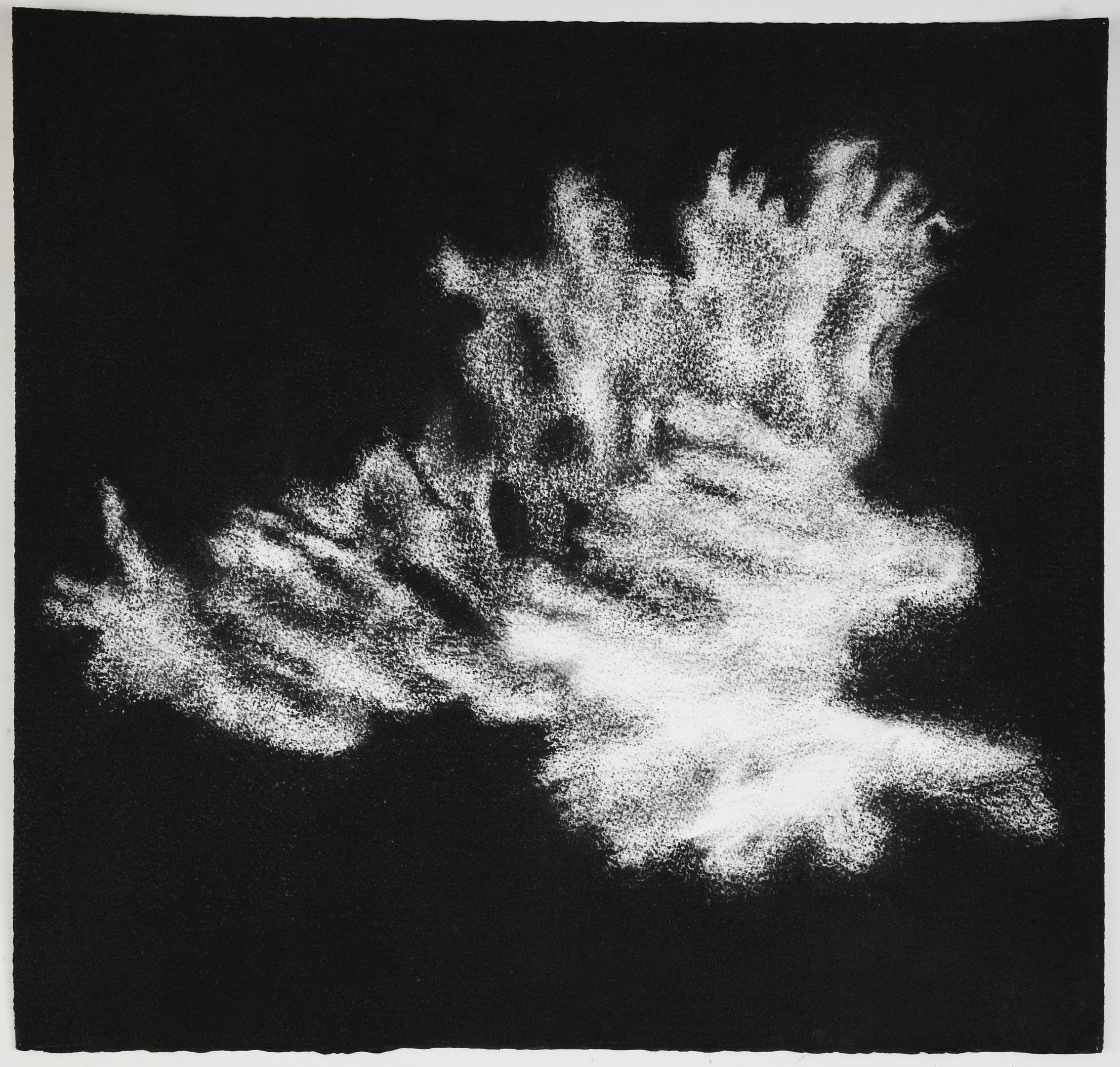 Jennifer Keeler-Milne, 2012, Sea sponge #7, 57x60cm charcoal on paper.jpg