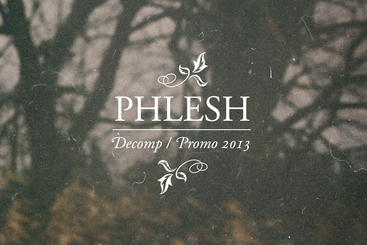 design_2013_phlesh_decomp01.jpg