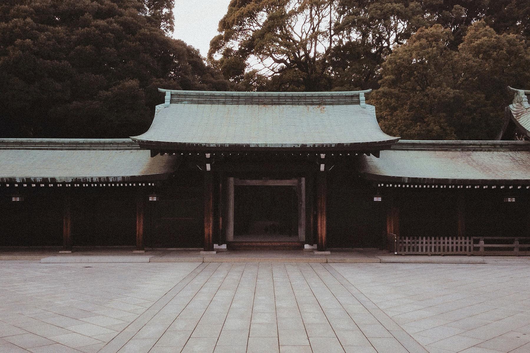 journal_01_japan_the_arrival07.jpg