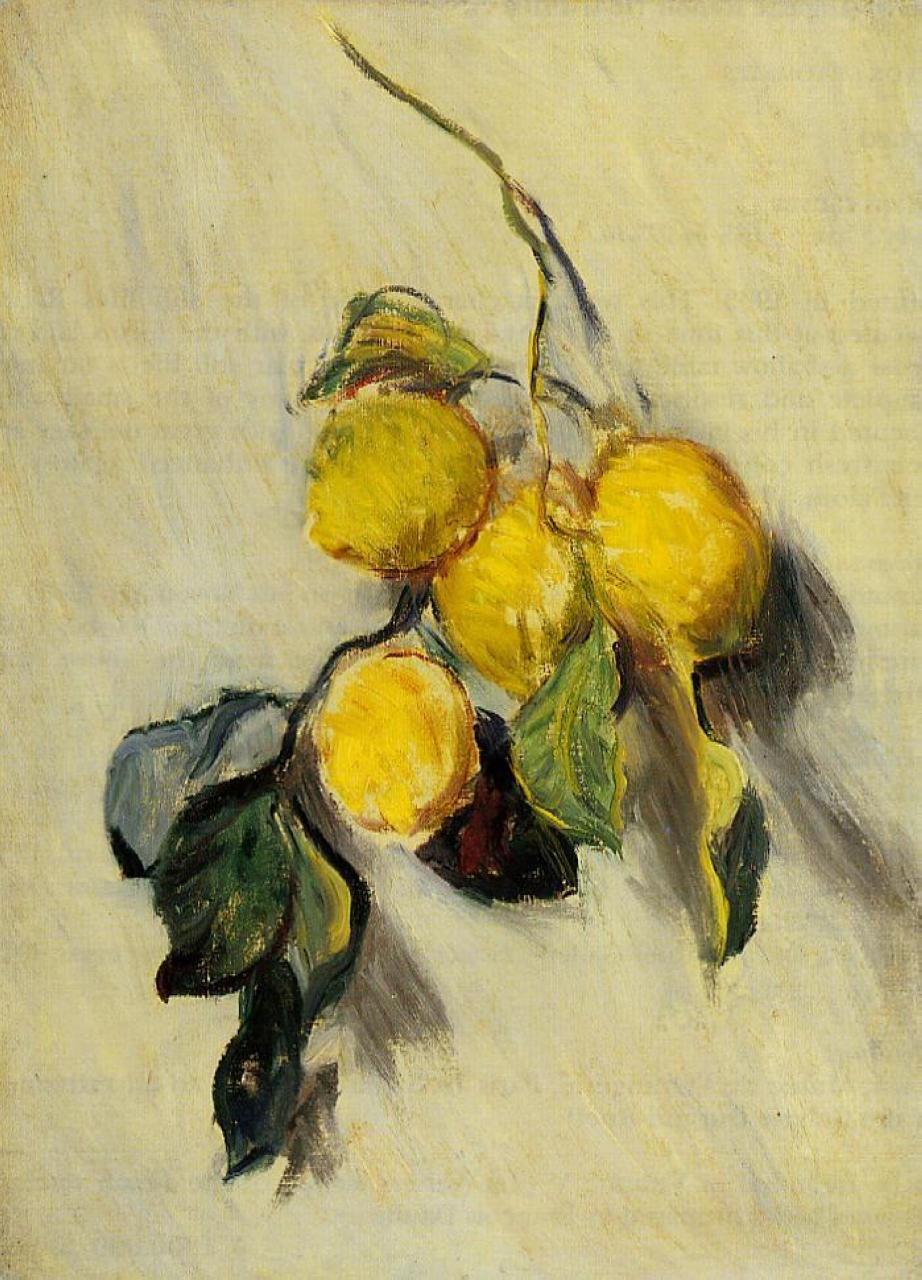 Claude Monet - Study of Lemons 1883