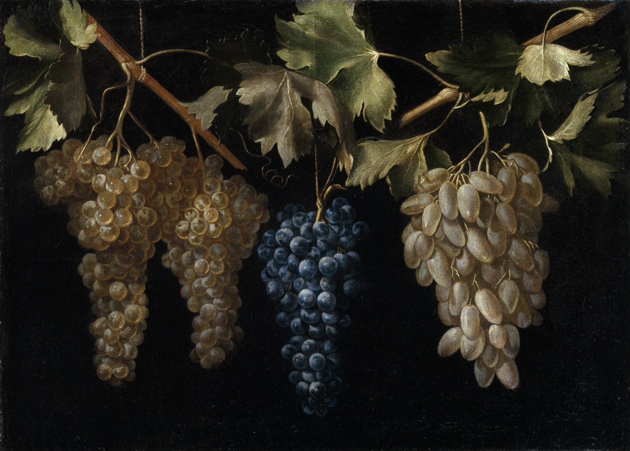 Four Bunches of Grapes Juan Fernandez El Labrador, c 1636