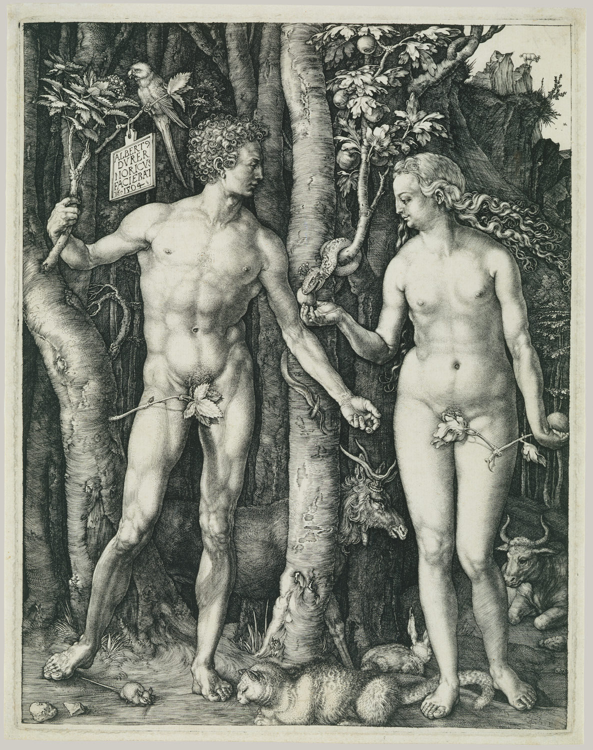 Albrecht Dürer Adam and Eve engraved print, c 1504
