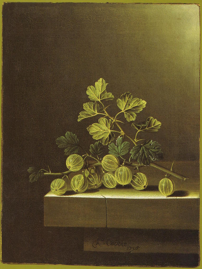 English Spray of Gooseberries on a Stone Plinth, 1700 Dutch artist Adriaen Coorte (ca. 1665 – after 1707)