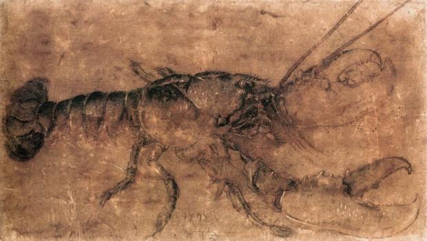 Albrecht Dürer, A lobster, 1495, Staatliche Museen, Berlin  (image - WikiArt)