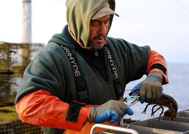 Greg Weeks Photos by Christine Hochkeppel from the  Cape Cod Times article 'Brothers embrace life as Cape lobstermen'  For more photography from Christine Hochkeppel check out her website  Salty Broad