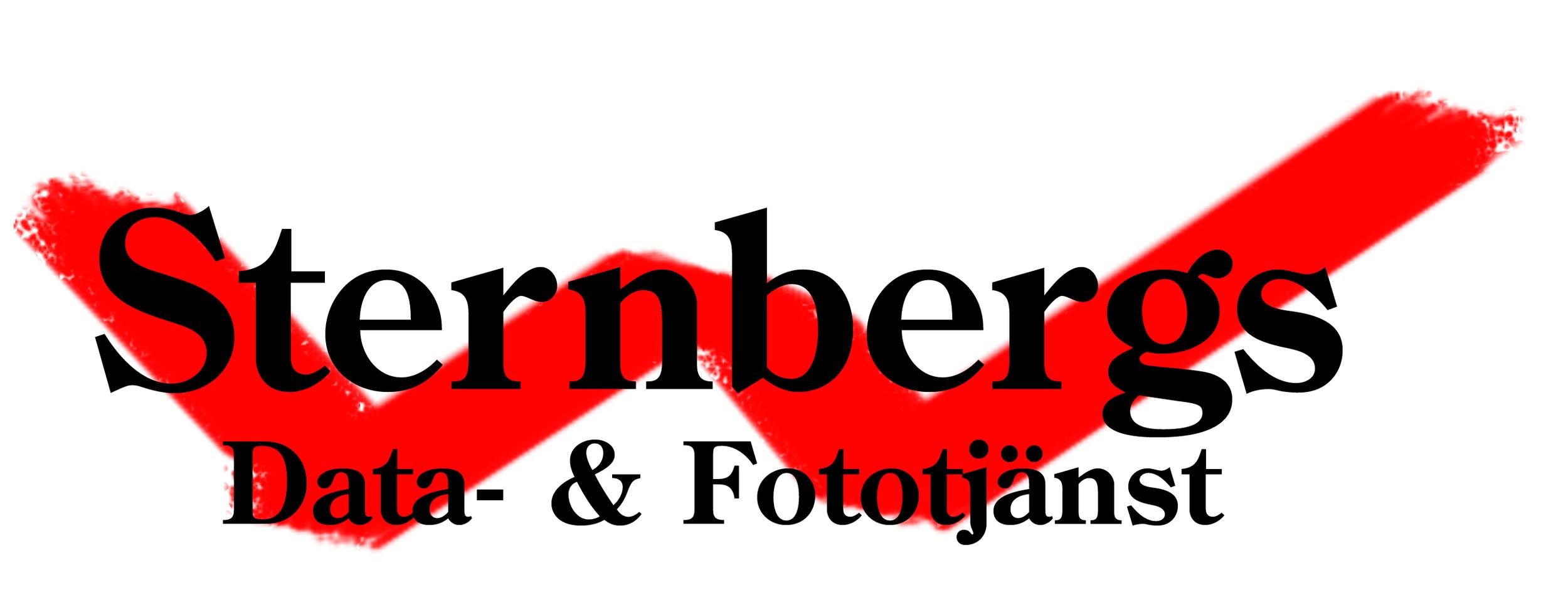 sternbergs-NY-logo.jpg
