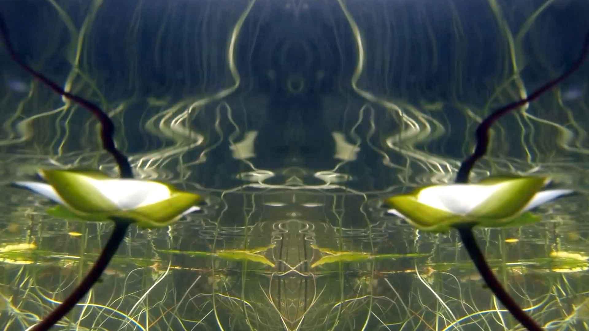 Pilgrim-Pond-Pyramid-11.jpg