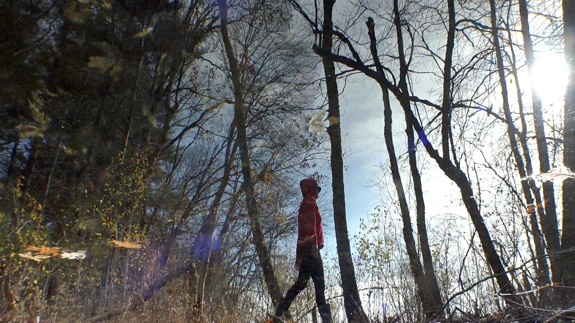 Cove-Reflections-13.jpg