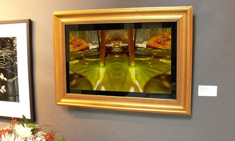 Mirror-at-Fine-Arts-Show.jpg