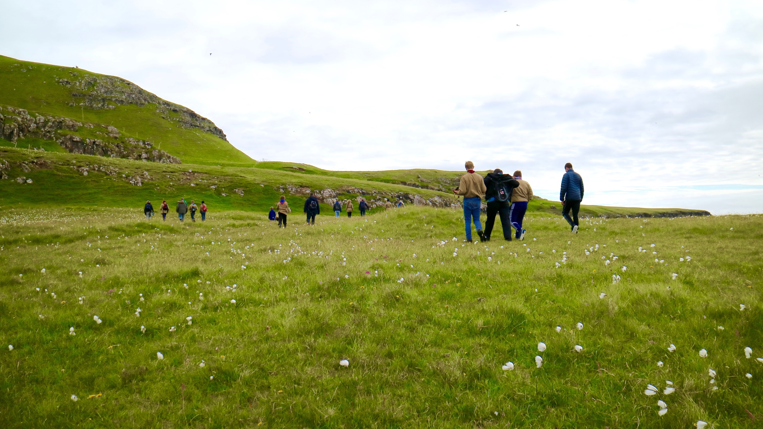Sweet cotton grass: Discovering Tindhólmur together with the scouts ...